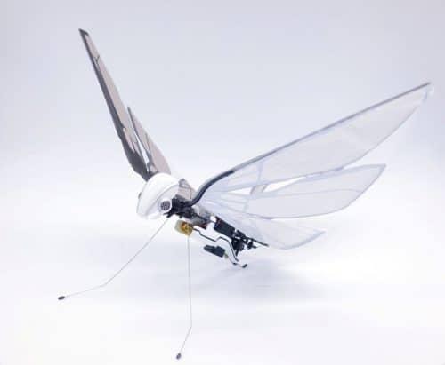 MetaFly | Flugvogel die neu Art der Drohner