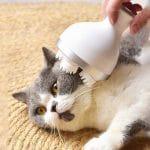 Katzen Massagegerät