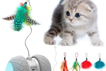 onkeys-interaktives-katzenspielzeug