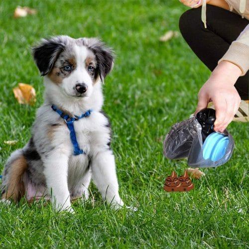 RoyalCare Faltbare Hundekotschaufel